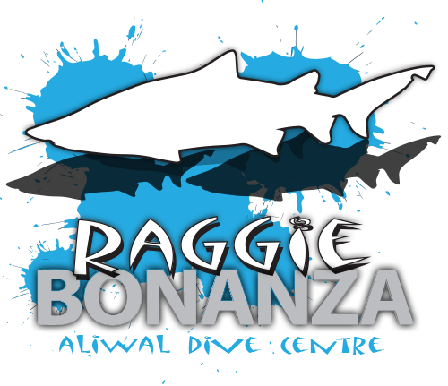 aliwaldive-raggie-bonanza