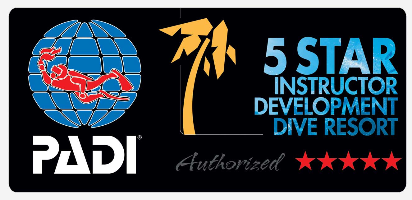 padi 5 star instructor development resport