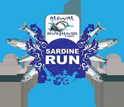 aliwaldive-sardine-run-2017